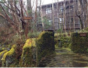 森の中にひっそりと建つ冬のペンション モーツァルト